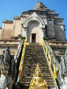 Chedi Luang 8
