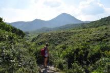 hiking-in-hk